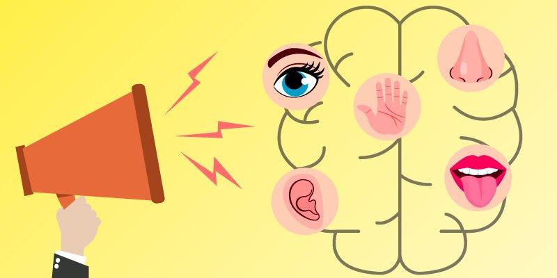 marketing sensorial-benefícios