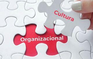 puzzle de cultura organizacional