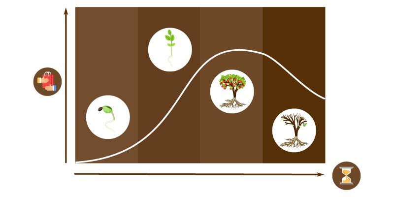 fases do ciclo de vida do produto gestao